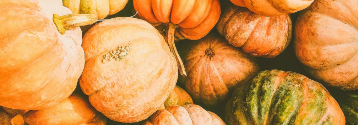 Fall Harvest Fest | WCPNC